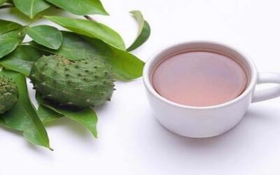 Eye-Opening Facts No One Will Tell You About Soursop Tea