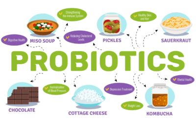 What is the Best Time to Take Probiotics?