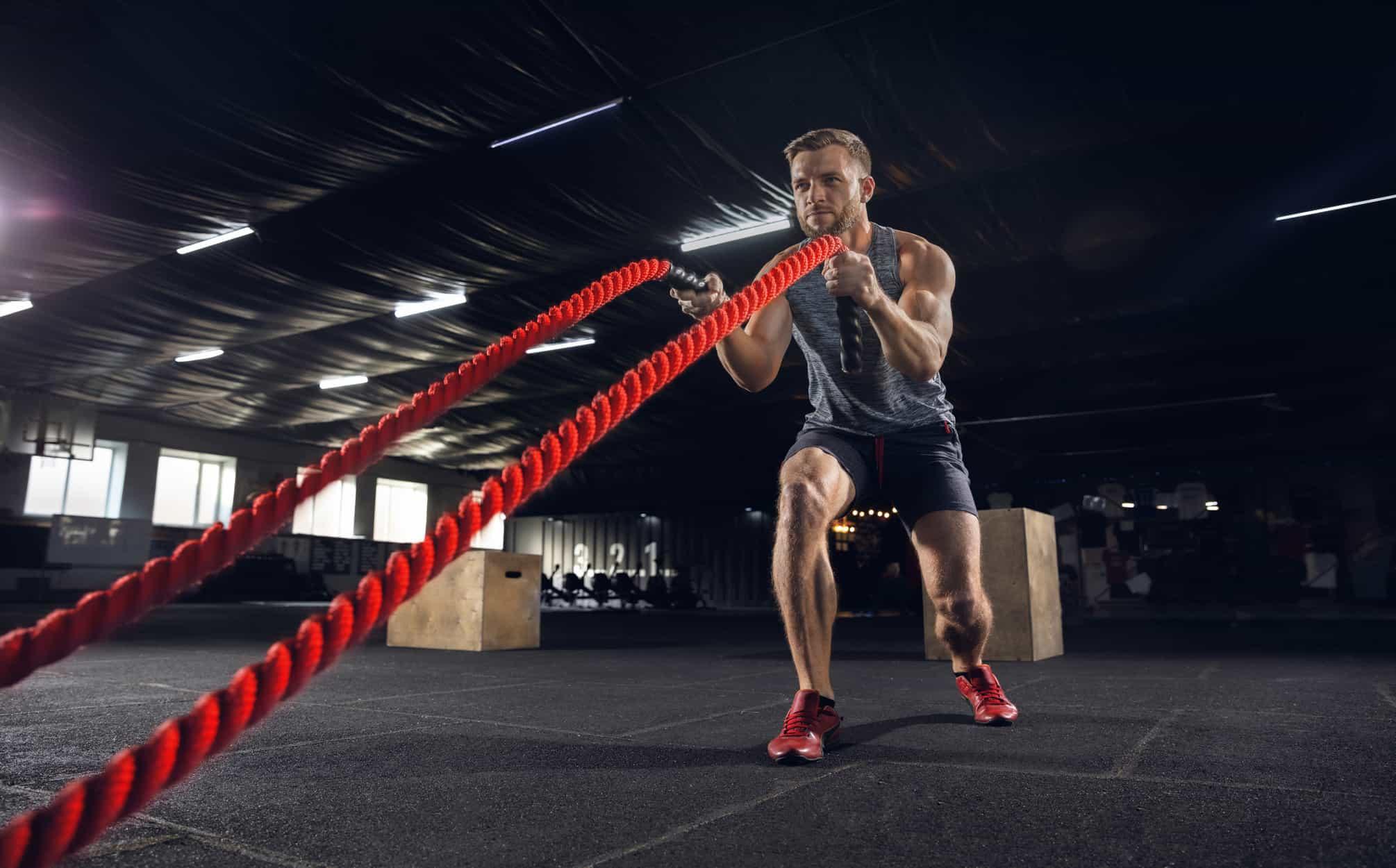 battle rope exercises for beginners